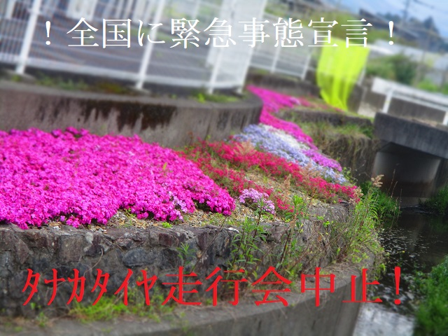 ★お知らせ☆ タナカタイヤ走行会Rnd①5.5延期開催 👈中止